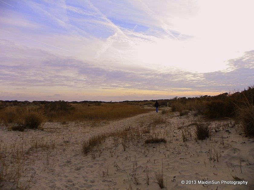 On the Life of the Dunes Trail.