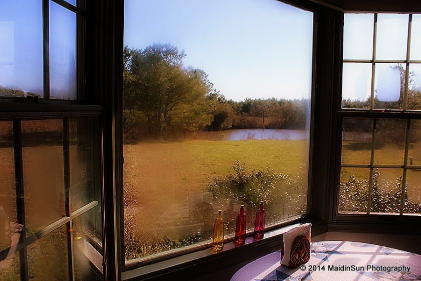 Looking at the lagoon through the kitchen window.